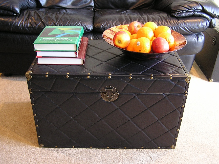 Black Leather Trunk